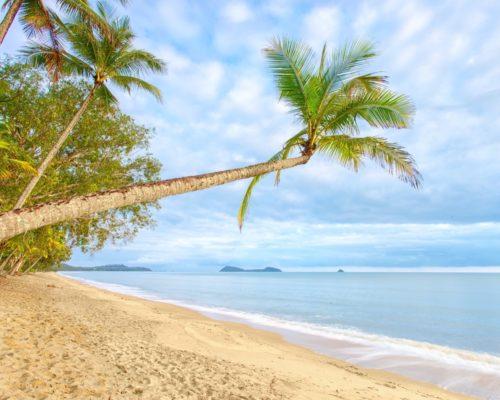 palm-cove-cairns-2
