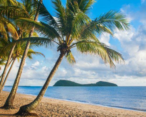 palm-cove-cairns-3