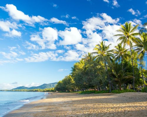 palm-cove-cairns-5